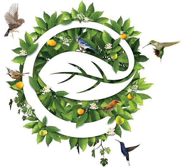 Ecopark - Aqua Bay | Tỷ lệ chuyển đổi cao nhờ áp dụng chiến lược tập trung trong phân bổ ngân sách Marketing 2